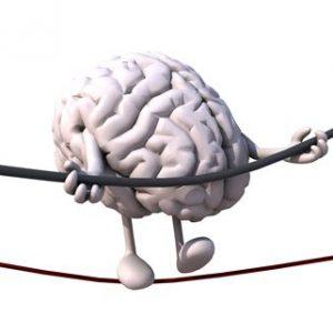 Рационален и емоционален мозък.