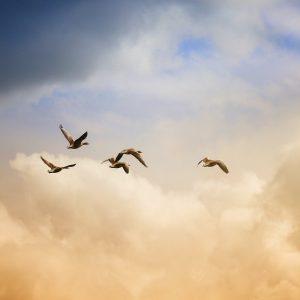 От мисловна към духовна енергия